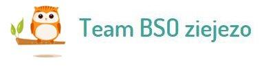 Het team van BSO ziejezo